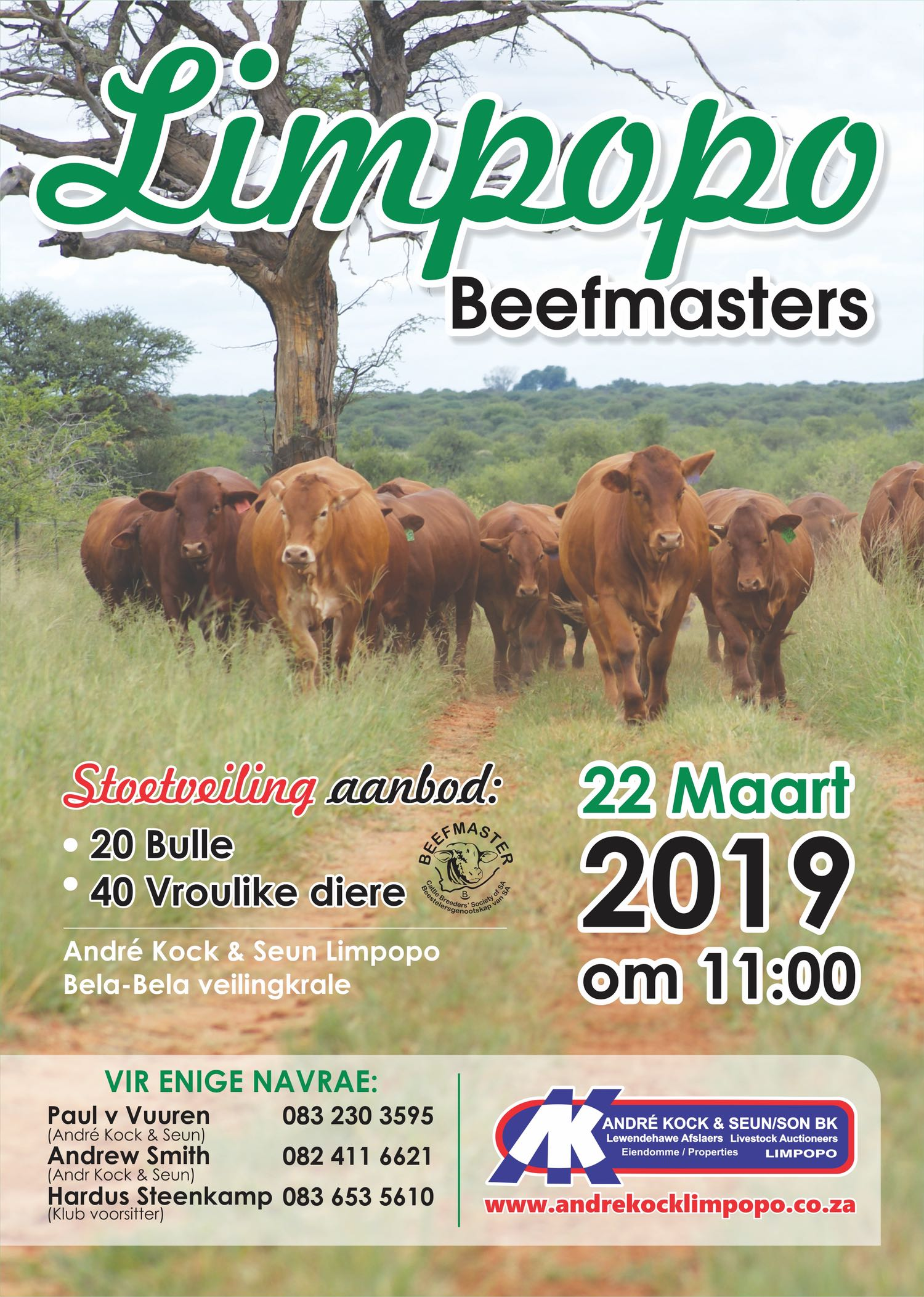 Limpopo Beefmasters – Andre Kock Limpopo
